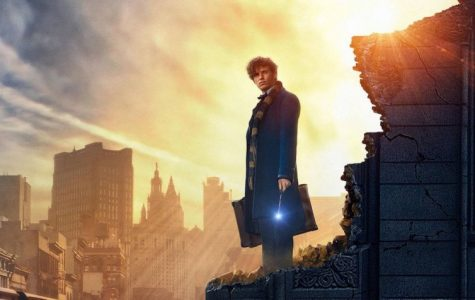 Fantastic Beasts and Where to Find Them; A Magical Return to the World of Harry Potter