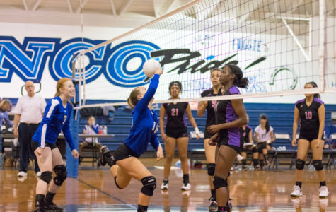 Bronco Volleyball Vs. Desert