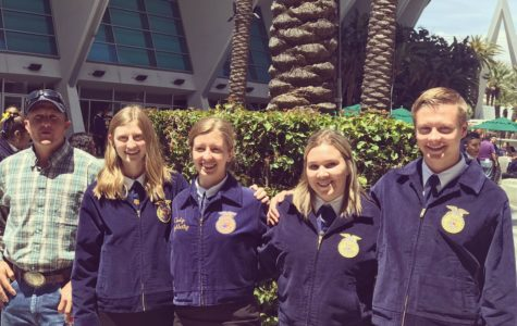 Small Town Student Wins Big National Scholarship; Nora Cimino and the National FFA Scholarship