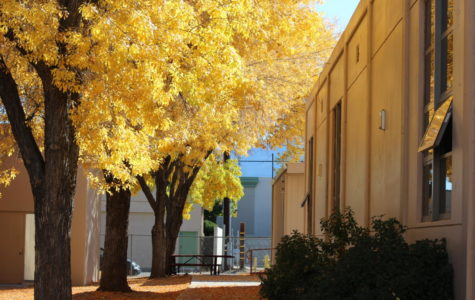 Bishop High's Fall Colors