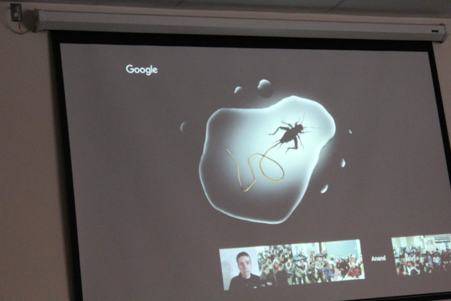 Cartoon of infected cricket created by Anand A. Varma. National Geographic presentation.